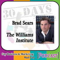 "Brad Sears Interview for ""30 Days – 30 Voices – Stories from America's LGBT Business Leaders"" [Podcast]"